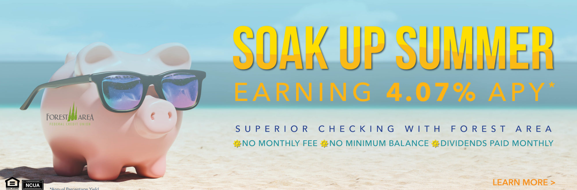 Learn more about how you can earn up to 4.07% on your first $15,000 with Superior Checking
